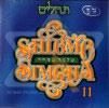 Tehilim by Shlomo Simcha