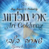 Simcha B'libi by Ari Goldwag