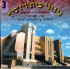 Songs of Chassidei Vizhnitz Vol. 3 by The Vizhnitz Choir