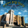 Songs of Chassidei Vizhnitz Vol. 12