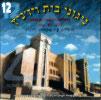 Songs of Chassidei Vizhnitz Vol. 12