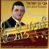 His Golden Hits by Avi Ben Israel