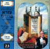 The Book of Shemot - Parashat Pekoudee