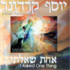 I Asked One Thing Von Yosef Karduner