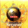 Serpent - Chinese Feng Shui Music by Shanghai Chinese Traditional Orchestra