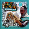 High Holidays - Rosh Hashana Por Yisroel (Srully) Williger