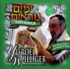 High Holidays - Yom Kippur by Yisroel (Srully) Williger