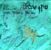 In This Blue Gray Light Par Sivan Shavit
