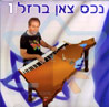The Best Israeli Songs Vol. 1 Par Amos Barzel
