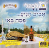 Aviv Hegiah Pesach Ba