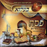 Passover by Rabbi Yermie Damen