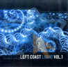 Left Coast Liquid - Vol. 1 - Various