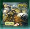Breslev - Nigunei Neshama by Various