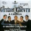 Sing a Cappella by Eli Gerstner